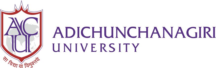 Adichunchanagiri University